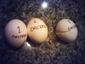 chickens_hatch